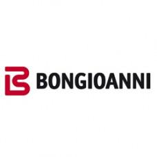 Запчасти на Bongioanni (Бонжуани)